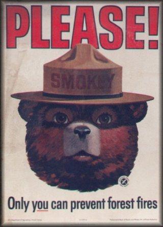 smokey-grand-marshal