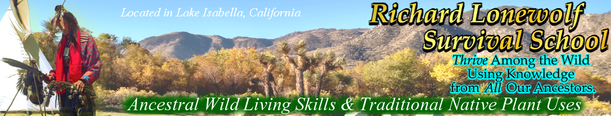 40+ Years Teaching Ethnobotany & Wilderness Survival